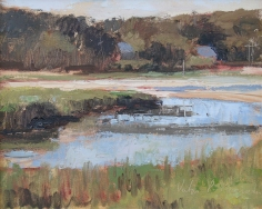 Cape Marsh